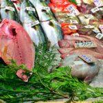 夏が旬の魚介類|食べるべき!夏の寿司屋でこれを探せ!!【料理の豆知識】